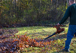 Electric leaf blower in use